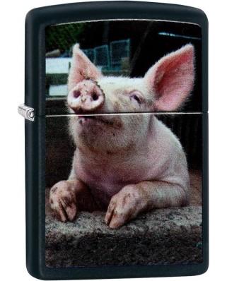 Zippo Dreaming Pig